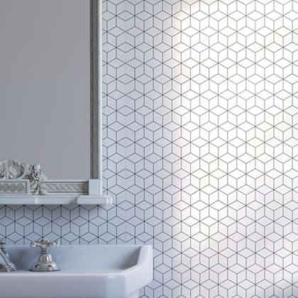 Geo Cube Acrylic Showerwall in a bathroom